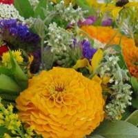 Das war die raum_wagende Zeit in Neulengbach-Blumenstrauß