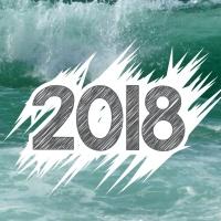 2018 - mein Blick nach vorne-